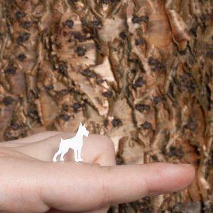 brincos dobermann branco