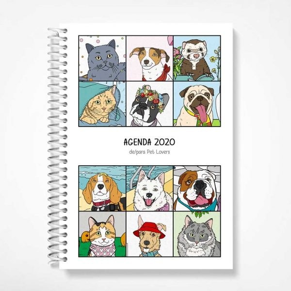 agenda 2020 - capa